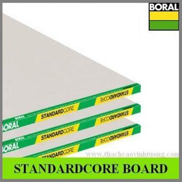 STANDARD-4 (1)