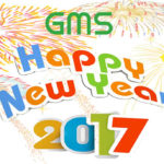 sonnuocmiennam-happy-new-year-2017-5